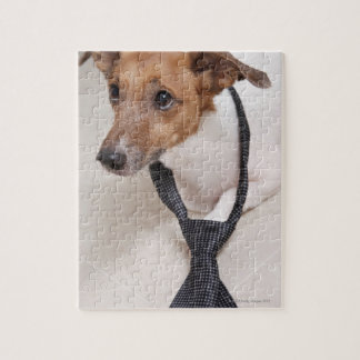 Close-up of a dog putting on a tie jigsaw puzzle
