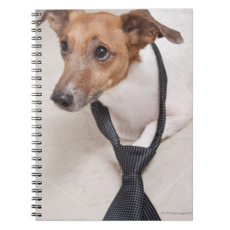 Close-up of a dog putting on a tie notebooks