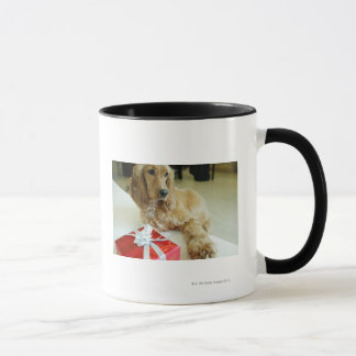 Close-up of a dog with a gift mug