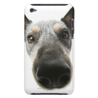 Close-up of a dog's head barely there iPod cases
