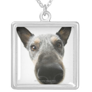Close-up of a dog's head silver plated necklace