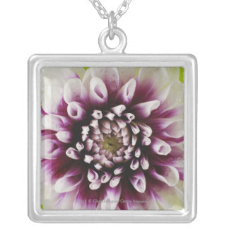 Close-up of a flower 2 silver plated necklace