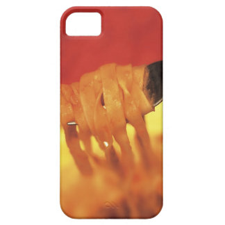 close-up of a forkful of pasta case for the iPhone 5