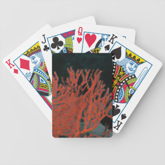 Close-up of a Gorgonian Sea Fan Bicycle Playing Cards