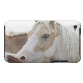 Close up of a herd of horses 2 iPod touch covers