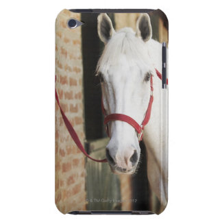 Close-up of a horse 2 barely there iPod case