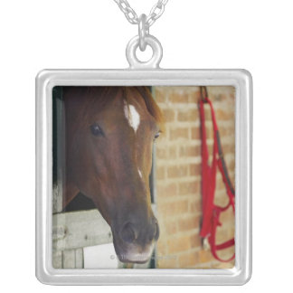Close-up of a horse 3 silver plated necklace