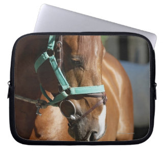 Close-up of a horse 4 laptop sleeve