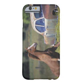 Close-up of a horse running near a car on a barely there iPhone 6 case