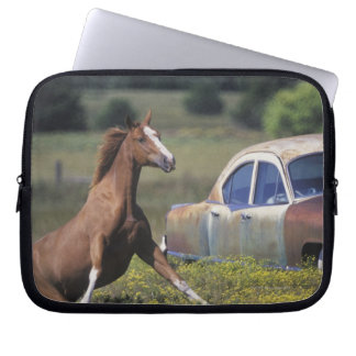 Close-up of a horse running near a car on a laptop sleeve