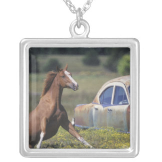 Close-up of a horse running near a car on a silver plated necklace