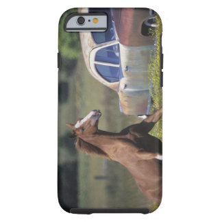 Close-up of a horse running near a car on a tough iPhone 6 case