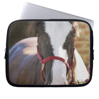 Close-up of a horse tied in a stable laptop computer sleeve