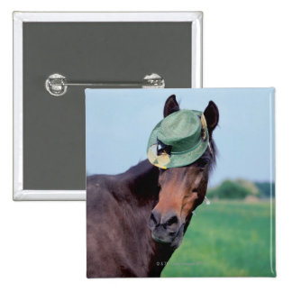 Close-up of a horse wearing a green hat 15 cm square badge
