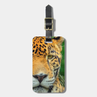 Close-up of a jaguar face, Belize Luggage Tag