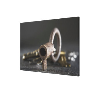 Close-up of a key in a key ring canvas print