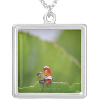 Close-up of a ladybug on a leaf silver plated necklace