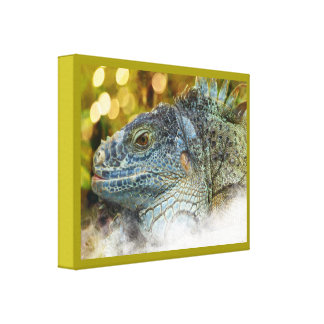 Close Up of a Large Scaly Green Iguana Lizard Stretched Canvas Print