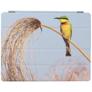 Close-up of a little bee-eater bird iPad cover
