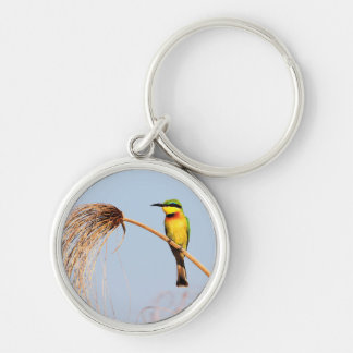 Close-up of a little bee-eater bird key ring