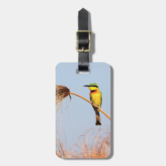 Close-up of a little bee-eater bird luggage tag