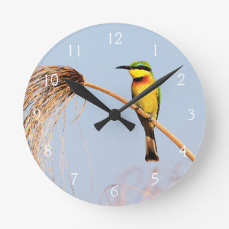 Close-up of a little bee-eater bird round clock