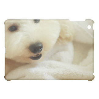 Close-up of a miniature poodle 2 iPad mini cases