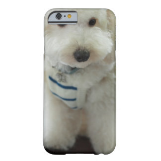 Close-up of a miniature poodle barely there iPhone 6 case
