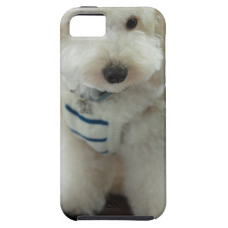Close-up of a miniature poodle tough iPhone 5 case