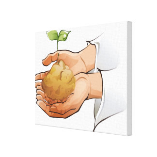 Close-up of a person's hands holding seedling canvas print