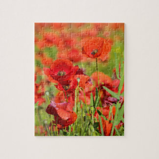 Close-up of a Poppy field, France Jigsaw Puzzle