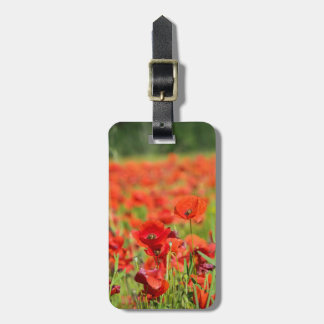 Close-up of a Poppy field, France Luggage Tag