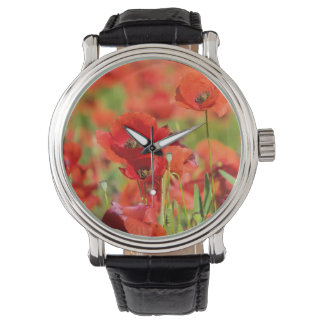 Close-up of a Poppy field, France Wristwatch