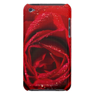 close-up of a red rose barely there iPod cases