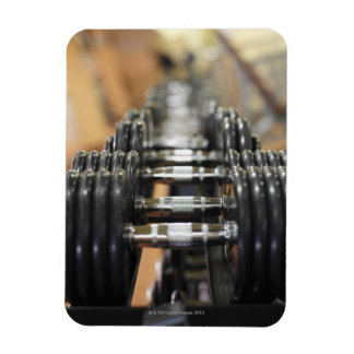 Close-up of a row of dumbbells rectangular photo magnet