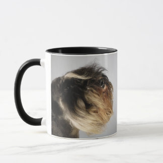 Close-up of a Schnauzer Mug