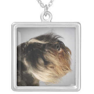 Close-up of a Schnauzer Silver Plated Necklace
