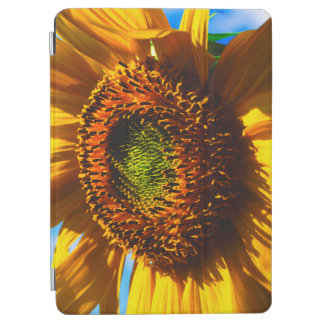 Close-up of a sunflower iPad air cover