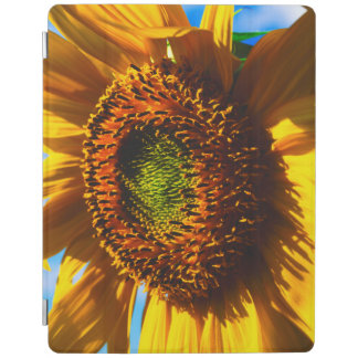 Close-up of a sunflower iPad cover