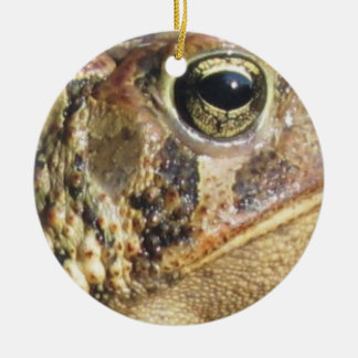 Close Up Of a Toad Round Ceramic Decoration