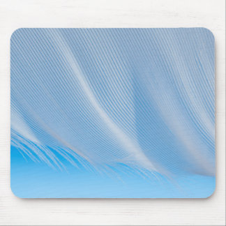 Close-Up Of A White Feather Mouse Mat