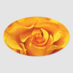Close Up of a Yellow Rose Stickers