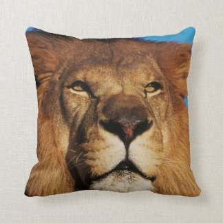 Close-up of African Lion Cushion