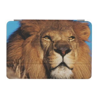 Close-up of African Lion iPad Mini Cover