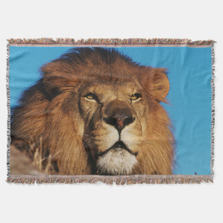 Close-up of African Lion Throw Blanket