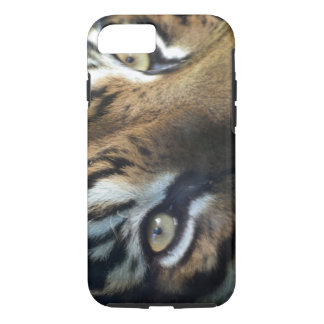 Close up of an adult male Sumatran Tiger iPhone 8/7 Case