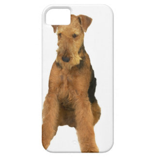 Close up of an airedale terrier iPhone 5 cases