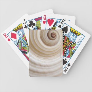 Close-up of an animal shell bicycle playing cards