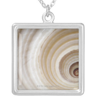 Close-up of an animal shell silver plated necklace