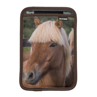 Close up of an Icelandic horse iPad Mini Sleeve